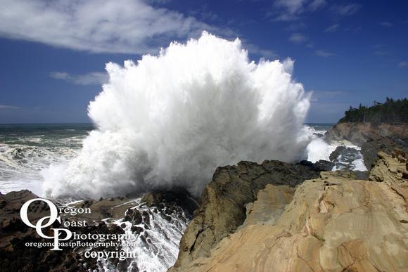 Shore Acres State Park Waves Shore Acres Wave